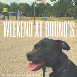 Weekend At Bruno's